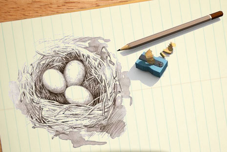 sketch of nest and eggs on notebook paper
