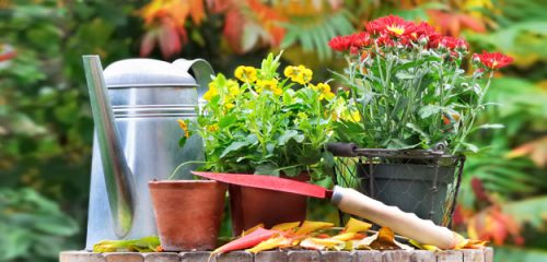 The Benefits of Eco-friendly Fall Gardening Practices - Thomas ...