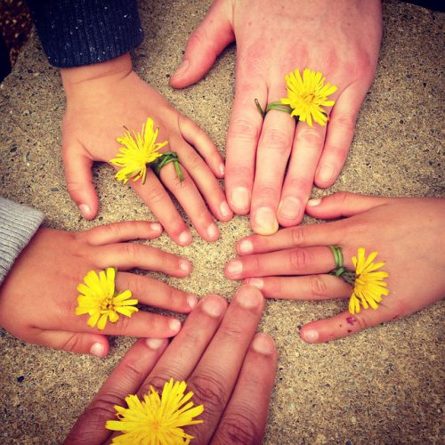 Hands with dandelion rings