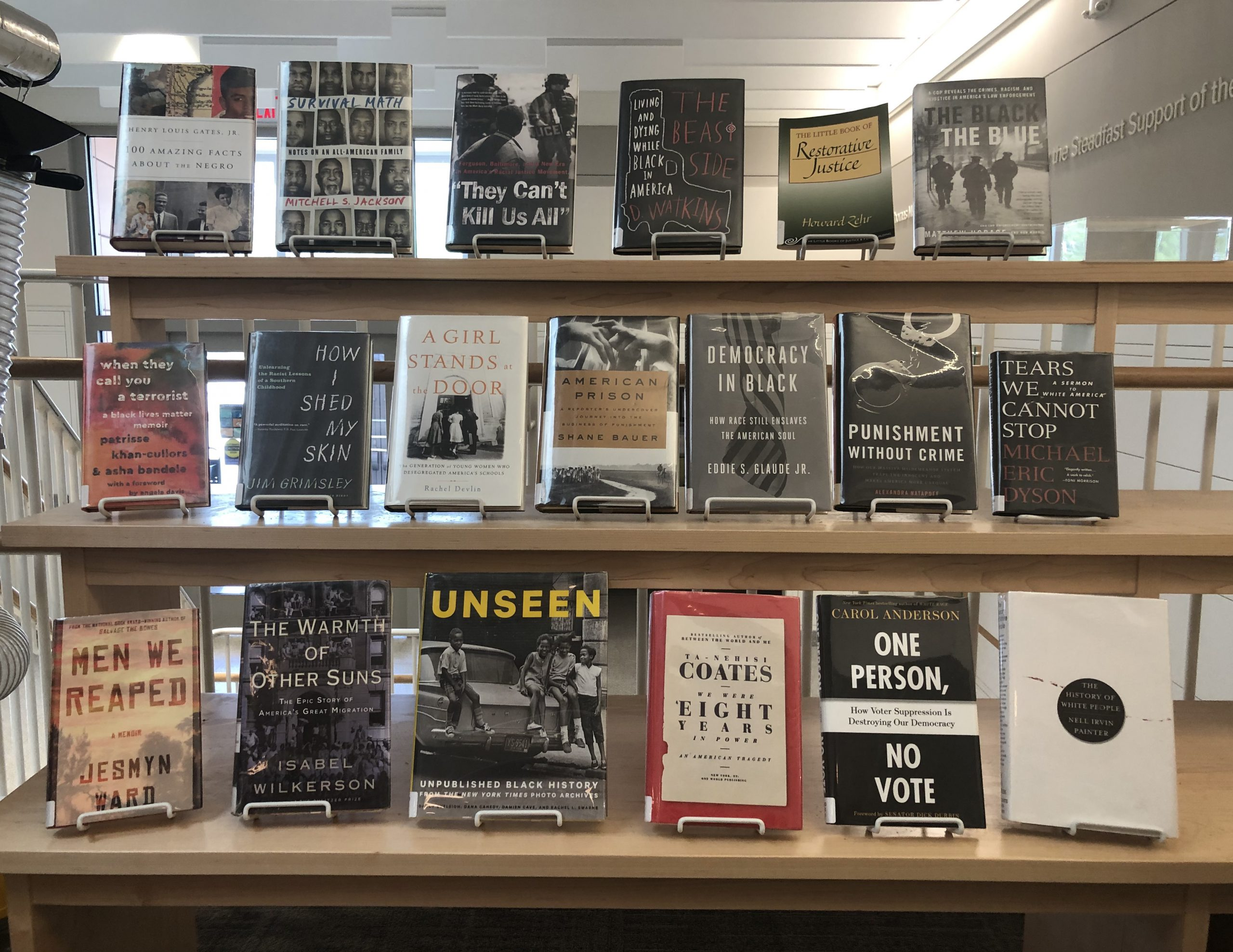 Browse Books on Racism and Social Justice II